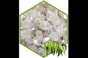 Pastillen Eukalyptus OHNE ZUCKER 50g